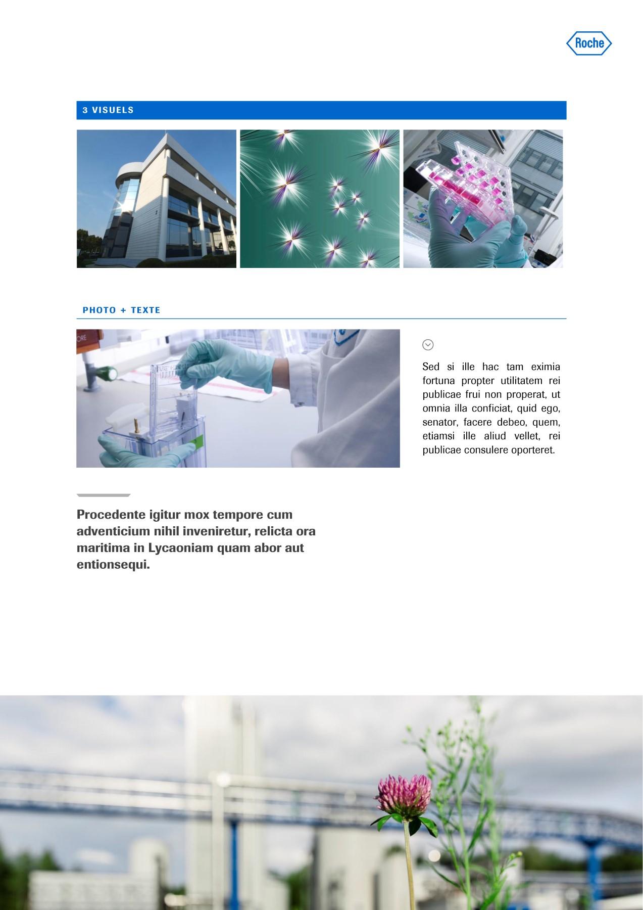 Modèle de présentation Word professionnelle pour laboratoire Roche 6