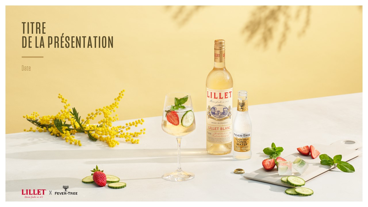 Template PowerPoint professionnel - Lillet