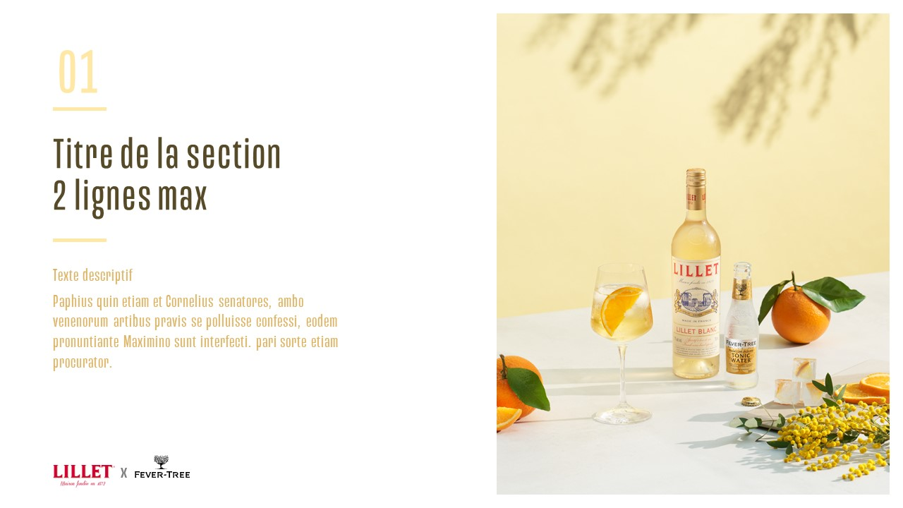 Template PowerPoint professionnel - Lillet 2